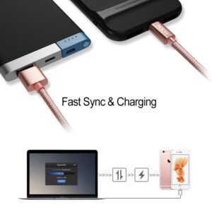 ROCK iPhone Lightning Cable